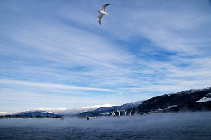 Sea smoke at Kitimat harbour
