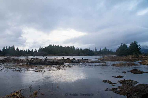 Kitimat River estuary