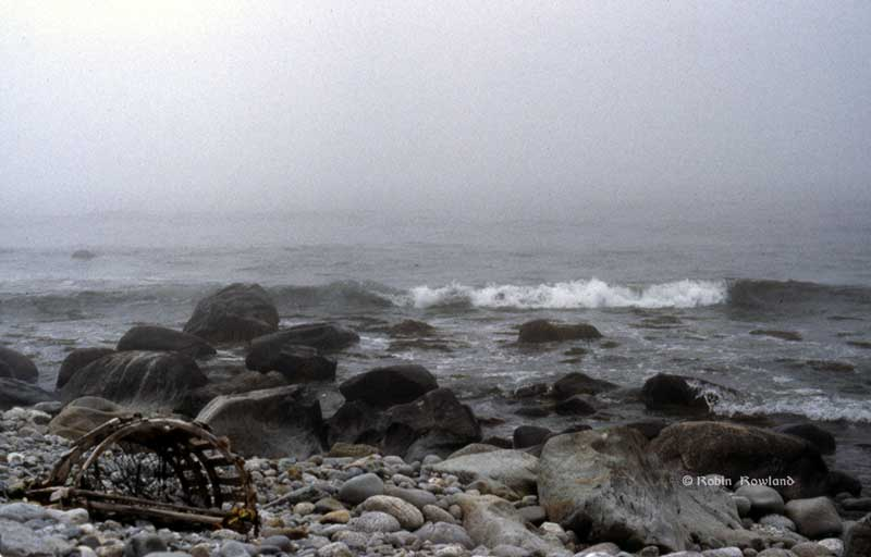 A washed up lobster trap on a rocky shore near Barrington Harbour, South Shore, Nova Scotia, Summer 1984. (Robin Rowland)