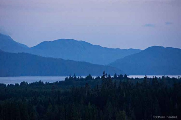 Forest and Kitimat harbour,