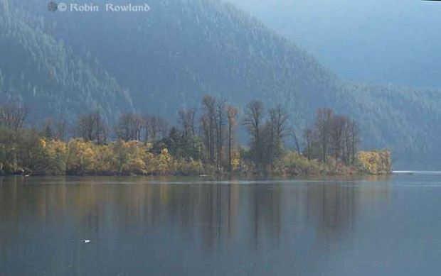 Fall on the Skeena