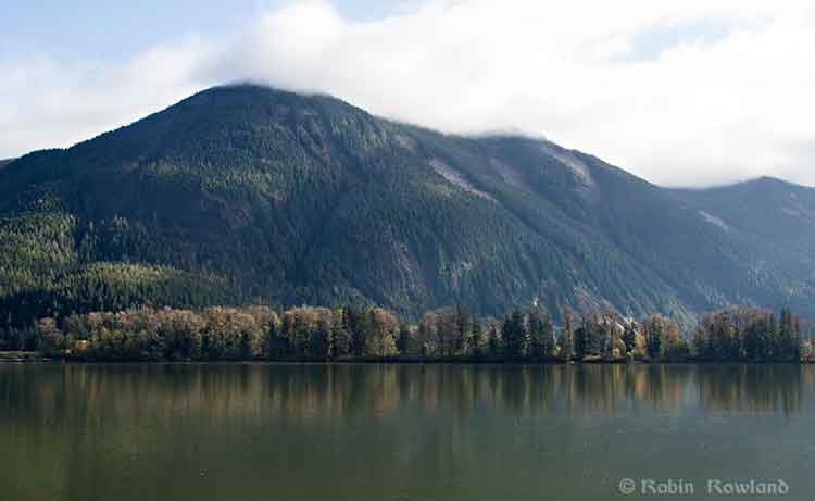 Fall colours on the Skeena
