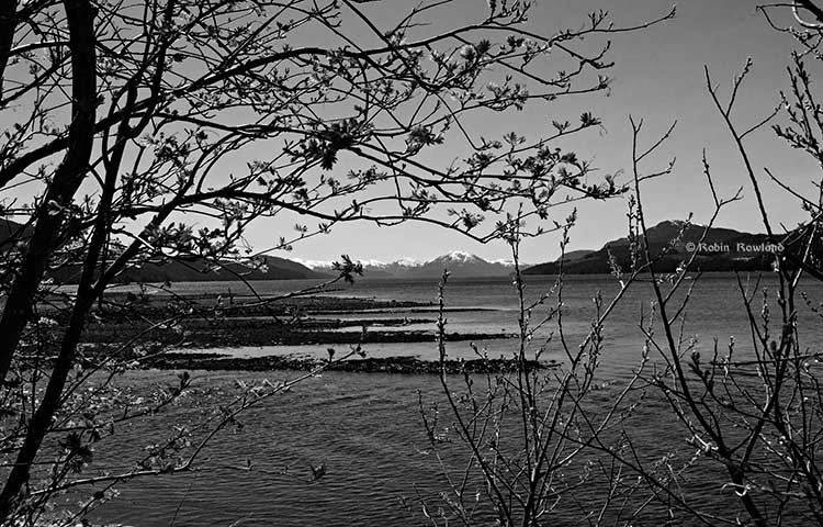Douglas Channel from MK Bay in black and white