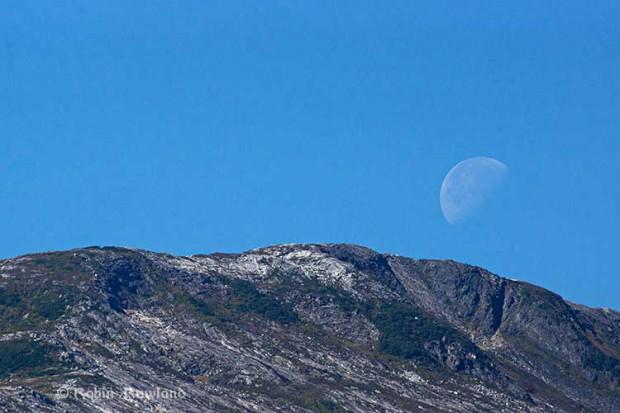 Moon sets over Hawkesbury
