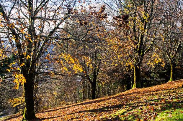 Fall Sunday in Kitimat