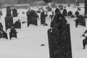 Old Burial Ground Cambridge