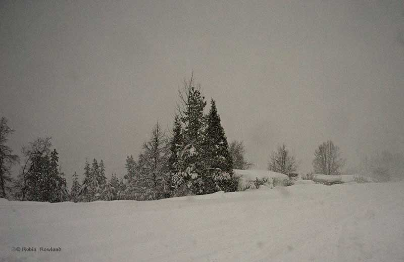 Heavy snow fal;s