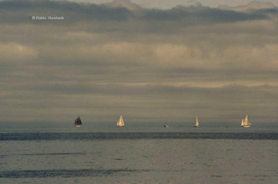 tallships84_170_yachts