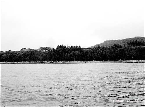 476-Bish-Cove-July-27-_1bw.jpg