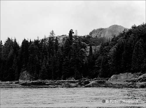 478-Bish-Cove-July-27-_3bw.jpg
