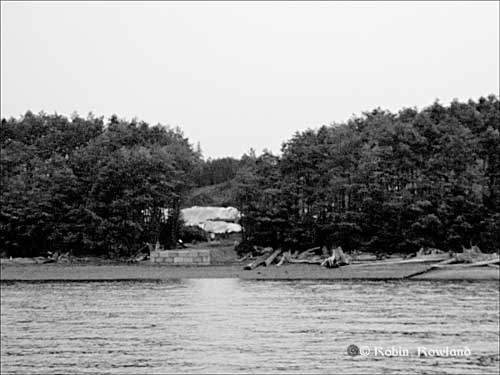 479-Bish-Cove-July-27-_5bw.jpg
