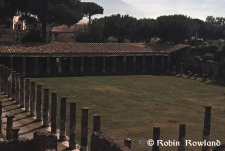 57-pompei_school-gladiators-thumb-450x302-56.jpg