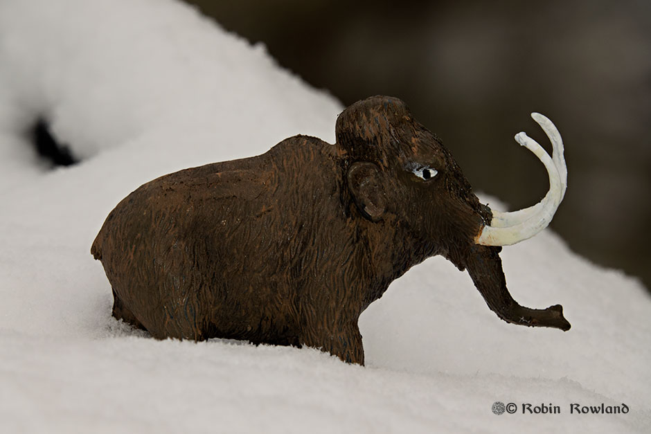 A vintage toy wooly mammoth